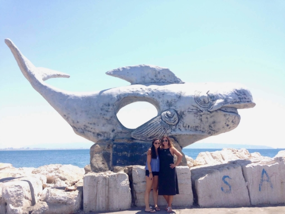 what to do in akko israel
